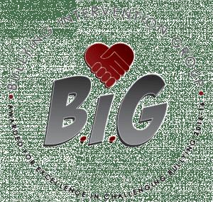 BIG 2015 2016
